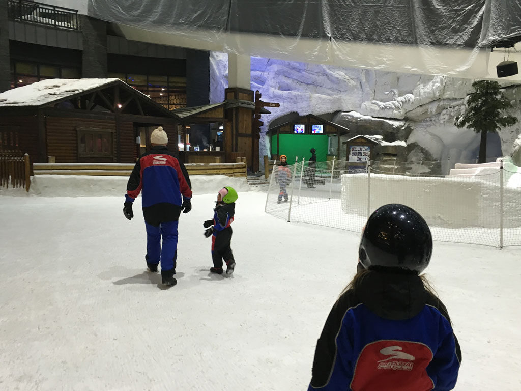 ski31