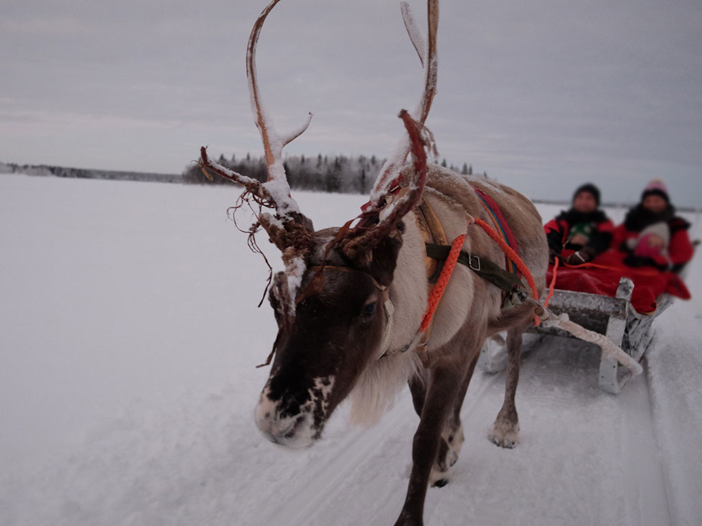Visiting lapland santa a guide to planning and booking your visiting lapland santa a guide to planning and booking your holiday you need to visit family travel blog solutioingenieria Choice Image